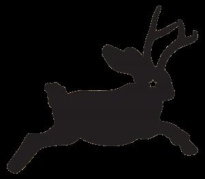 NORTH PEAK diabolical - jackalope