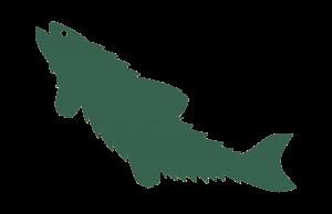 NORTH PEAK furry - fish