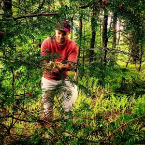 GRIMM super spruce foraging